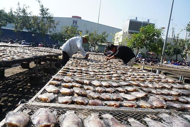 Chợ thủy hải sản khô lớn nhất Sài Gòn tất bật ngày cận Tết  - Ảnh 17.