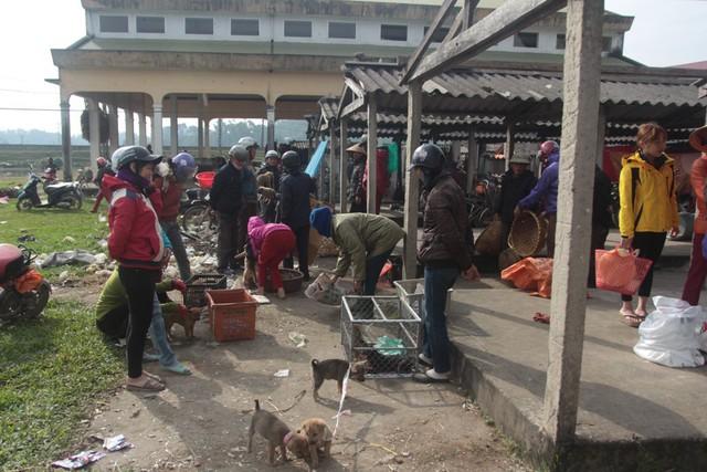 Chợ chó con ở Nghệ An đông vui nhộn nhịp vào ngày 29 Tết - Ảnh 2.