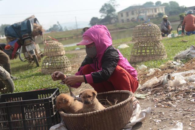Chợ chó con ở Nghệ An đông vui nhộn nhịp vào ngày 29 Tết - Ảnh 3.