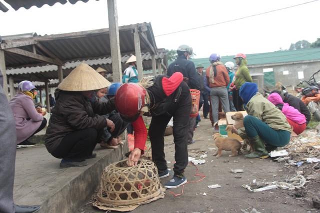Chợ chó con ở Nghệ An đông vui nhộn nhịp vào ngày 29 Tết - Ảnh 5.