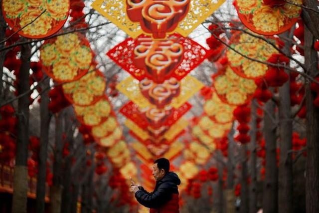 Châu Á ngập tràn sắc đỏ cùng linh vật chú chó chào Tết Nguyên Đán - Ảnh 1.