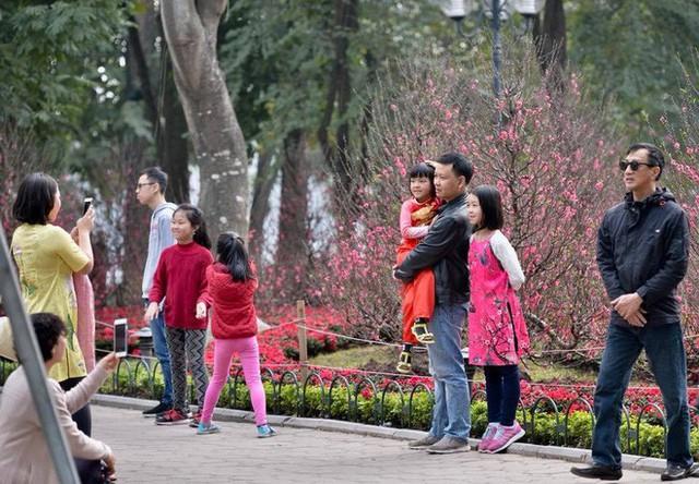 Phố cổ Hà Nội tấp nập người mua sắm ngày 29 Tết - Ảnh 8.