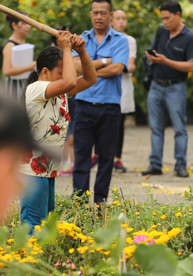 Đập nát hoa để không bị ép giá: Vùi dập cái đẹp bằng sự tức giận - Ảnh 3.
