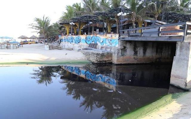 Chủ tịch Huỳnh Đức Thơ: Đà Nẵng đang gặp rắc rối về vấn đề môi trường - Ảnh 1.