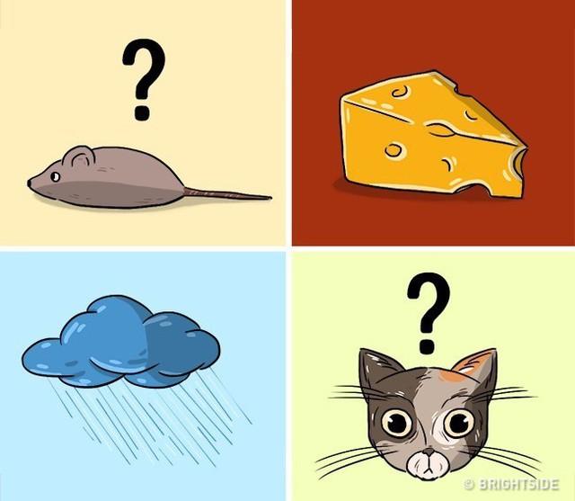 6 câu đố siêu khó này sẽ cho bạn biết mình có thông minh được hơn trẻ con lớp 5 hay không - Ảnh 3.