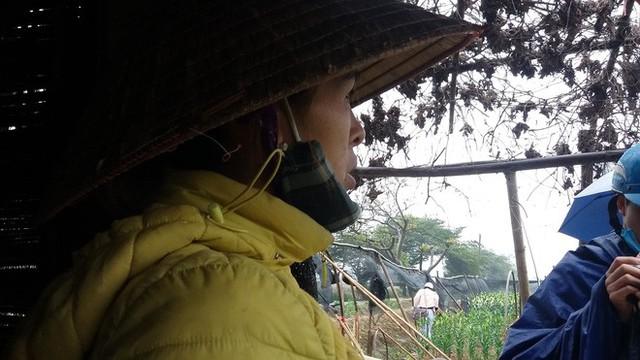 Hà Nội: Làng hoa Tây Tựu nở trái mùa, nông dân khóc ròng vì cắm nhà trả nợ - Ảnh 15.