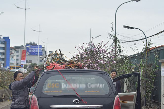 Nhà giàu Hà Nội chi tiền triệu chơi hoa lê rừng sau Tết  Kinh tế - Ảnh 18.