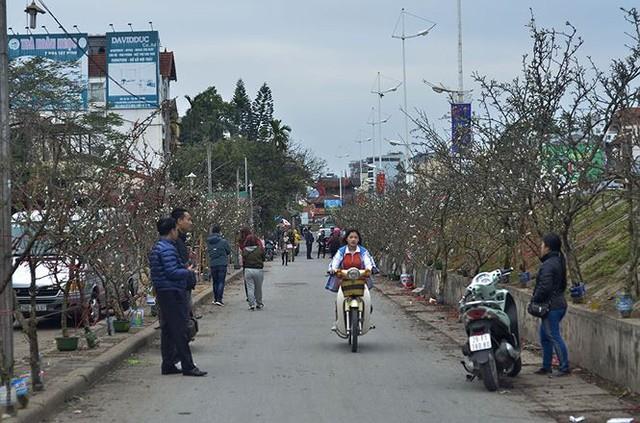 Nhà giàu Hà Nội chi tiền triệu chơi hoa lê rừng sau Tết  Kinh tế - Ảnh 3.