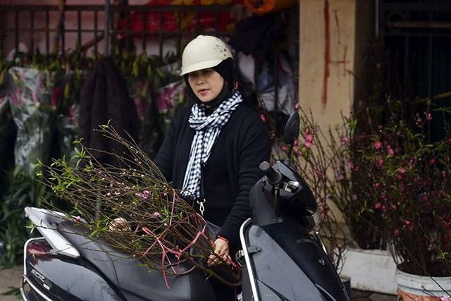 Nhà giàu Hà Nội chi tiền triệu chơi hoa lê rừng sau Tết  Kinh tế - Ảnh 6.