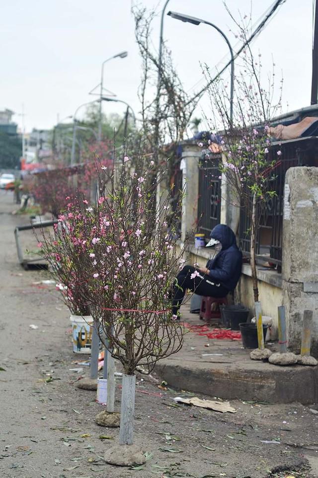 Nhà giàu Hà Nội chi tiền triệu chơi hoa lê rừng sau Tết  Kinh tế - Ảnh 8.