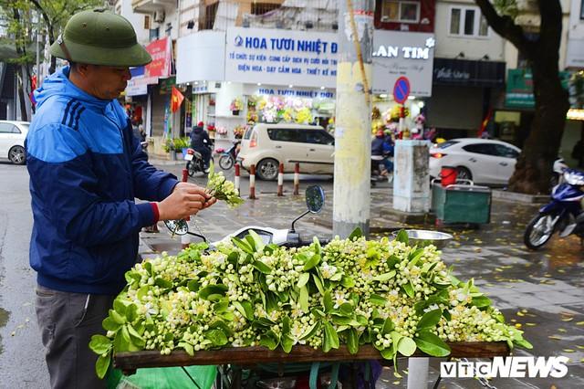Hoa bưởi đầu mùa, giá tới 300.000 đồng/kg vẫn hút khách Hà Nội - Ảnh 2.