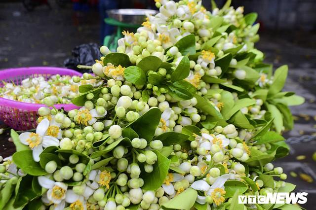 Hoa bưởi đầu mùa, giá tới 300.000 đồng/kg vẫn hút khách Hà Nội - Ảnh 12.