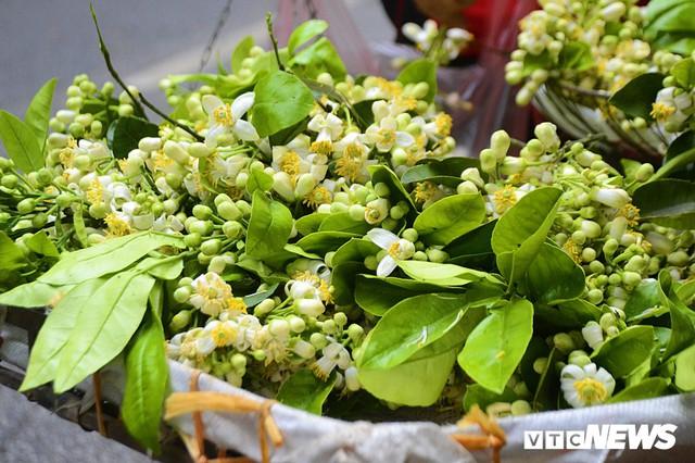 Hoa bưởi đầu mùa, giá tới 300.000 đồng/kg vẫn hút khách Hà Nội - Ảnh 4.