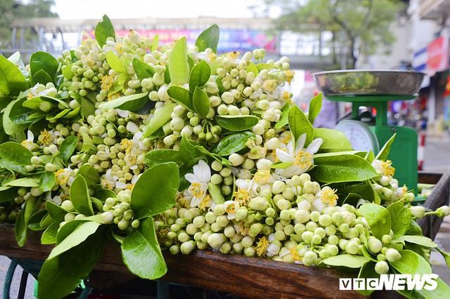 Hoa bưởi đầu mùa, giá tới 300.000 đồng/kg vẫn hút khách Hà Nội - Ảnh 6.