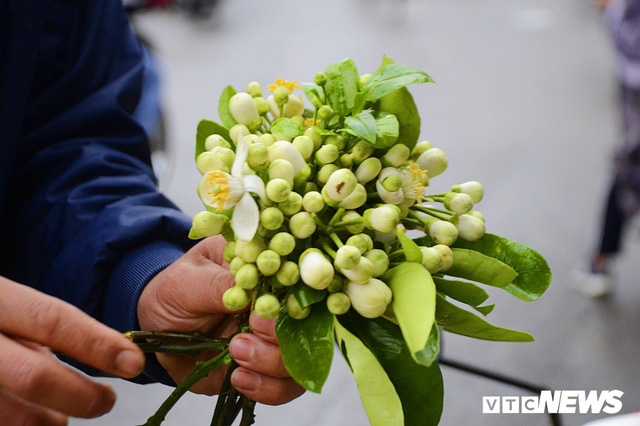 Hoa bưởi đầu mùa, giá tới 300.000 đồng/kg vẫn hút khách Hà Nội - Ảnh 7.