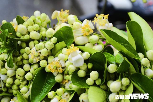 Hoa bưởi đầu mùa, giá tới 300.000 đồng/kg vẫn hút khách Hà Nội - Ảnh 8.