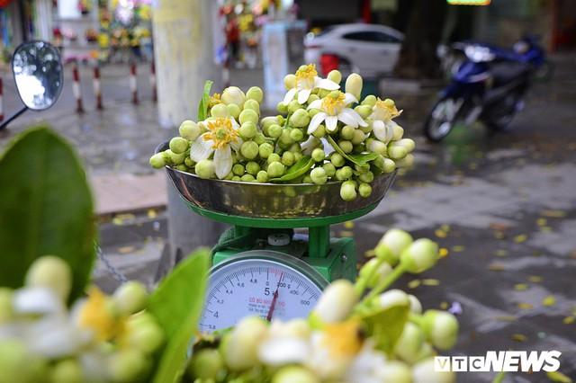 Hoa bưởi đầu mùa, giá tới 300.000 đồng/kg vẫn hút khách Hà Nội - Ảnh 9.
