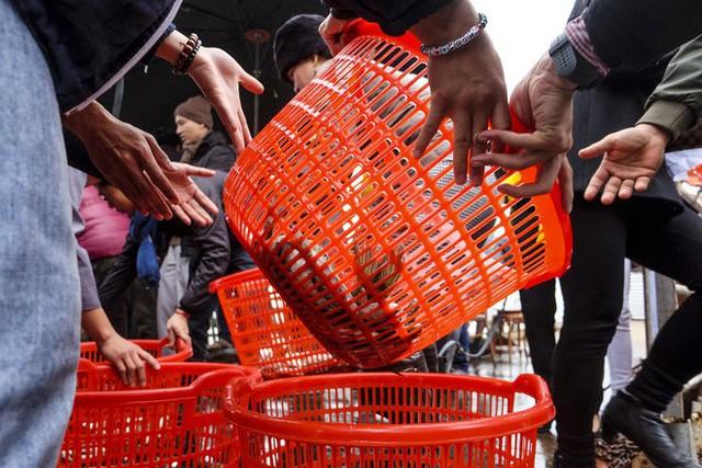 Hàng vạn người chuyền tay nhau phóng sinh gần 5 tấn cá xuống sông Hồng - Ảnh 9.
