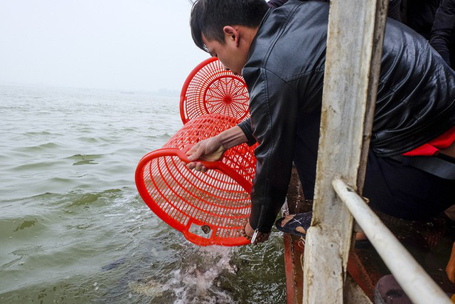 Hàng vạn người chuyền tay nhau phóng sinh gần 5 tấn cá xuống sông Hồng - Ảnh 10.