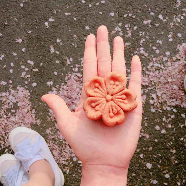 Không chỉ có Nhật Bản mà Hàn Quốc cũng đón chào mùa hoa anh đào với hàng loạt món ăn uống cực xinh - Ảnh 2.