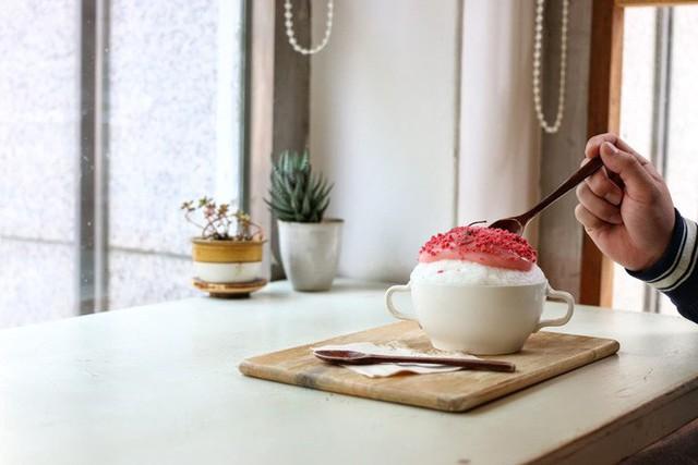 Không chỉ có Nhật Bản mà Hàn Quốc cũng đón chào mùa hoa anh đào với hàng loạt món ăn uống cực xinh - Ảnh 13.