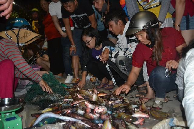 Ngư dân Lý Sơn săn cá đêm kiếm tiền triệu - Ảnh 5.