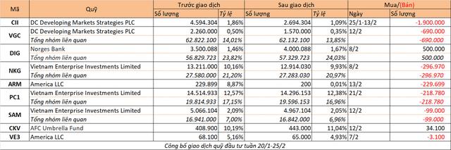 Chuyển động quỹ đầu tư tuần 20-25/2 - Ảnh 1.