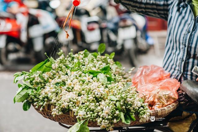 Giữa tiết trời nồm ẩm đầu xuân, có một Hà Nội nên thơ và dịu dàng hương hoa bưởi - Ảnh 4.