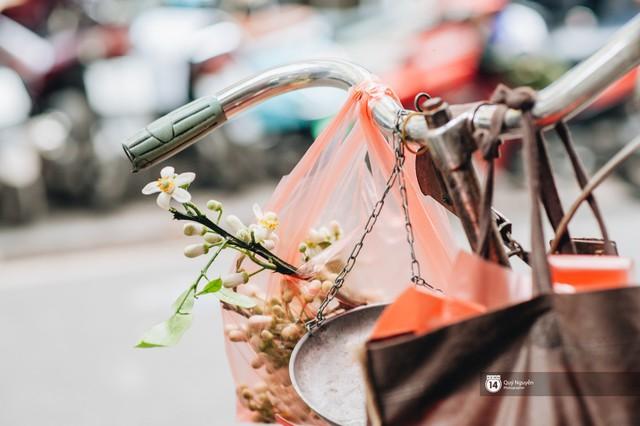 Giữa tiết trời nồm ẩm đầu xuân, có một Hà Nội nên thơ và dịu dàng hương hoa bưởi - Ảnh 8.