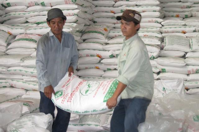 Viện trưởng Kinh tế nói về tồn đọng mía đường: Dựa vào giải cứu thì không thể nào tốt được - Ảnh 1.