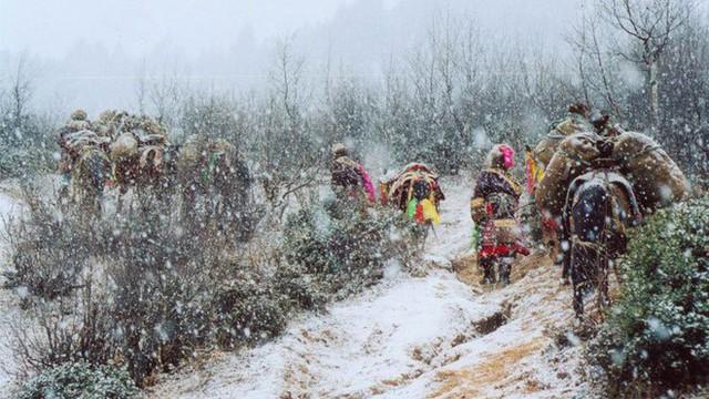 Trà bơ - thức uống phải đi gần 4.000 km mới đến nơi, giúp người Tây Tạng tồn tại hàng ngàn năm giữa cao nguyên lạnh giá - Ảnh 8.