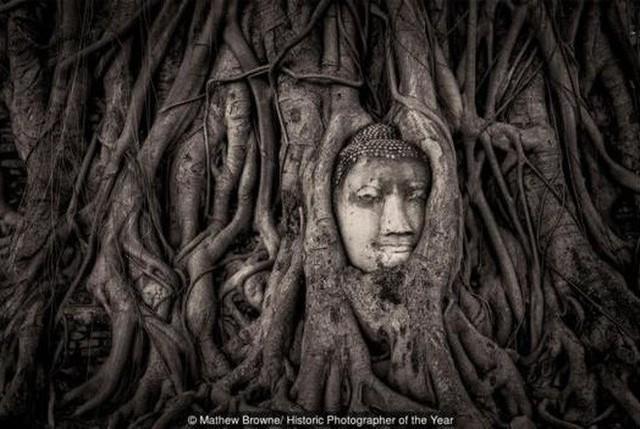 Bức tượng Phật 700 năm bị rễ cây nuốt chửng hé lộ sự tương đồng với nghệ thuật điêu khắc nổi tiếng nhất châu Âu - Ảnh 7.