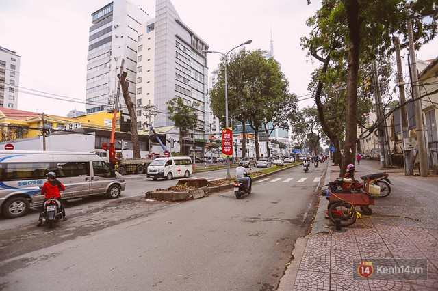 Chùm ảnh: Đường Tôn Đức Thắng trước và sau khi hàng trăm cây xanh bị đốn hạ để phát triển thành phố - Ảnh 15.