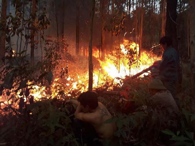 Ngày cúng ông Công, ông Táo, Quảng Ninh liên tiếp xảy ra 2 vụ cháy rừng lớn - Ảnh 2.