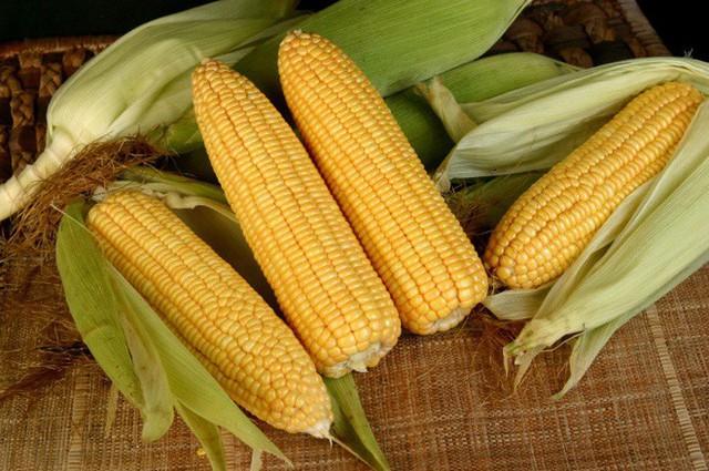 Chuyên gia tiết lộ 5 loại rau được công nhận là có tác dụng phòng chống ung thư hàng đầu - Ảnh 5.