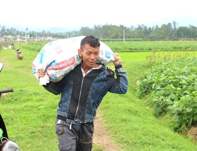 Cà dừa được mùa, giá cả ổn định, dân đi hái như trẩy hội - Ảnh 1.