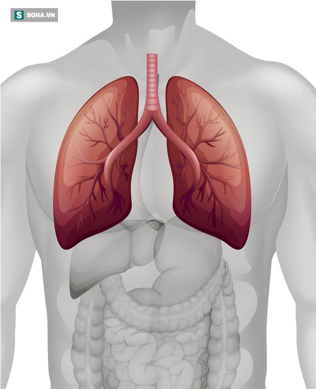 Dấu hiệu điển hình của ung thư phổi: Biết sớm để giành lại cơ hội sống cao nhất là 49% - Ảnh 1.