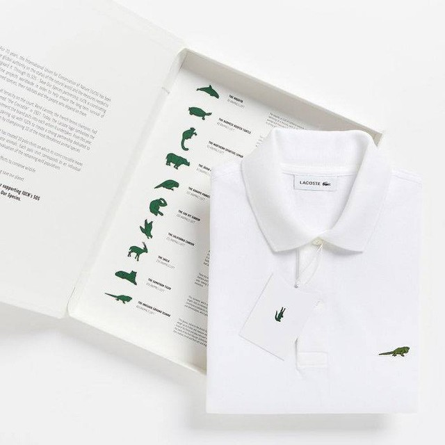 Lacoste thay thế logo cá sấu trên áo polo bằng 10 loài động vật có nguy cơ tuyệt chủng - Ảnh 2.