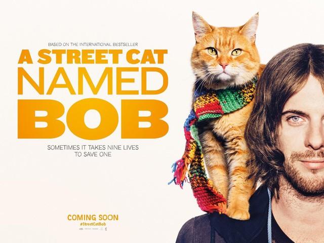 Cuộc đời chàng nghệ sĩ nghèo, nghiện ngập, vô gia cư bước sang trang mới nhờ... một chú mèo!  - Ảnh 2.