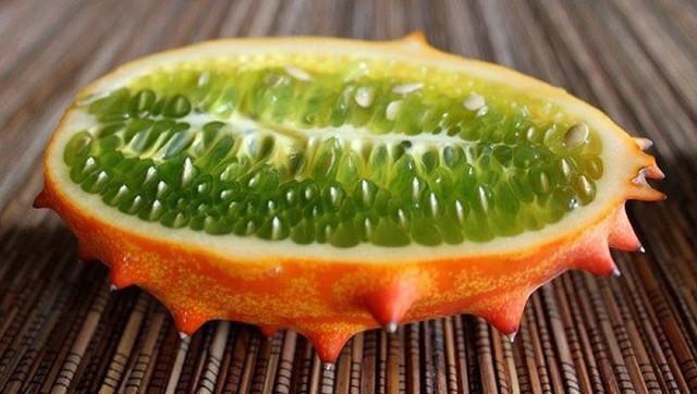 Loại dưa đầy gai vị giống kiwi có giá 400k/quả ở Việt Nam có gì đặc sắc - Ảnh 13.