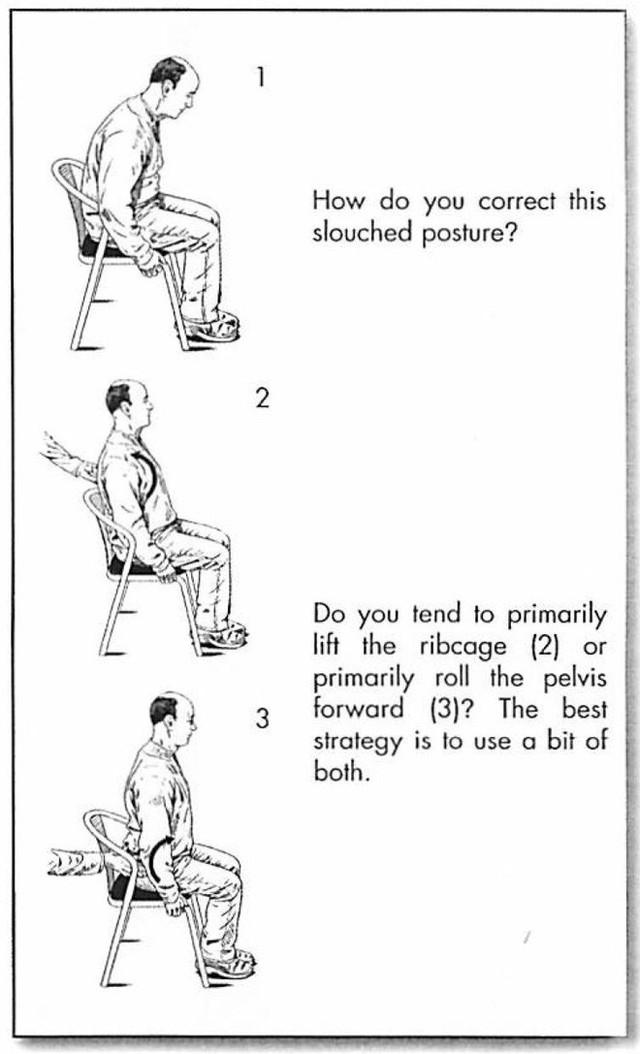 Hướng dẫn đứng và ngồi đúng cách, giúp dân văn phòng giảm nguy cơ đau mỏi cột sống - Ảnh 2.