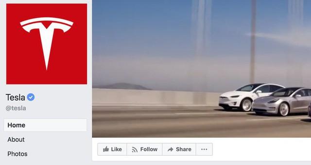 Elon Musk xóa hai trang Facebook chính thức của Tesla và SpaceX: Tôi không dùng Facebook và sẽ chẳng bao giờ dùng cả - Ảnh 2.