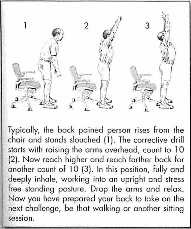 Hướng dẫn đứng và ngồi đúng cách, giúp dân văn phòng giảm nguy cơ đau mỏi cột sống - Ảnh 6.