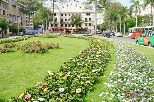 Bãi giữ xe bỏ hoang phía sau Nhà hát TP. HCM đã biến thành vườn hoa xanh ngát - Ảnh 2.