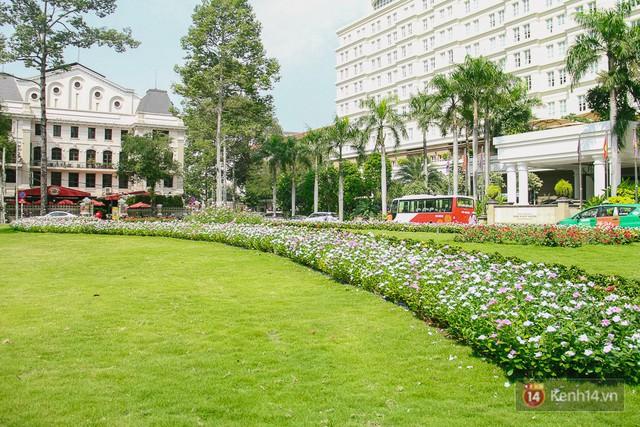 Bãi giữ xe bỏ hoang phía sau Nhà hát TP. HCM đã biến thành vườn hoa xanh ngát - Ảnh 6.