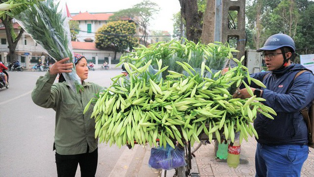 Từ vườn xuống phố, hoa loa kèn đầu mùa đội giá gấp 5-6 lần - Ảnh 1.