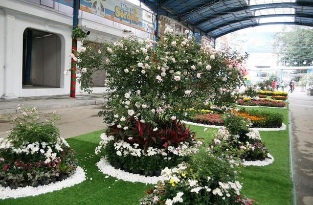 Cận cảnh Lễ hội hoa hồng Bulgaria lần thứ 2 trước giờ khai mạc  - Ảnh 12.