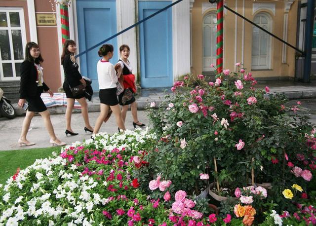 Cận cảnh Lễ hội hoa hồng Bulgaria lần thứ 2 trước giờ khai mạc  - Ảnh 13.