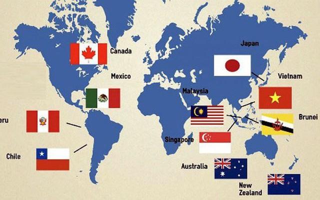 Báo quốc tế: Việt Nam và châu Á dẫn đầu thương mại tự do với CPTPP - Ảnh 1.