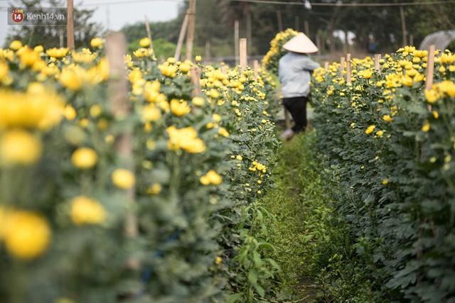 """8/3 của những người phụ nữ không bao giờ thiếu hoa: """"Mình thích thì mang hoa về tự cắm, chẳng cần chờ ai tặng cả!"""" - Ảnh 10."""